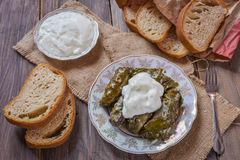 Dolma with grape leaves and Matsunami . Stock Photos