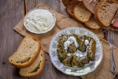 Dolma with grape leaves and Matsunami . Royalty Free Stock Photos