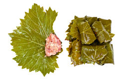 Dolma from Grape Leaves with a Minced Royalty Free Stock Photography