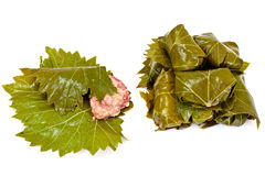 Dolma from Grape Leaves with a Minced Royalty Free Stock Photos