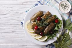 Dolma: grape leaves stuffed with meat, horizontal top view Royalty Free Stock Photo