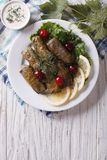 Dolma: grape leaves stuffed with meat, vertical top view Stock Photos