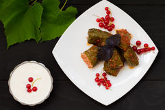 Dolma - this grape leaves stuffed with rice-based, as well  boiled minced meat. It is common in kitchens Caucasus, the Stock Image