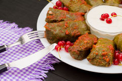 Dolma - this grape leaves stuffed with rice-based, as well boiled minced meat. It is common in kitchens Caucasus, the Stock Photography