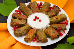 Dolma - this grape leaves stuffed with rice-based, as well boiled minced meat. It is common in kitchens Caucasus, the Stock Photo