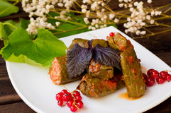 Dolma - this grape leaves stuffed with rice-based, as well boiled minced meat. It is common in kitchens Caucasus, the Royalty Free Stock Photography