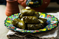 Dolma from grape leaves. Stock Images