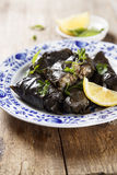 Dolma with lemon wedges Stock Photos