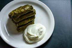 Dolma and natural yogurt Royalty Free Stock Photo