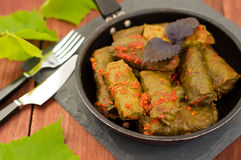 Dolma in the pan - this grape leaves stuffed with rice-based, as well  boiled minced meat. It is common in kitchens Stock Images