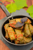 Dolma in the pan - this grape leaves stuffed with rice-based, as well  boiled minced meat. It is common in kitchens Stock Photos