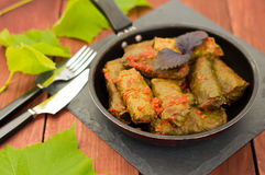 Dolma in the pan - this grape leaves stuffed with rice-based, as well  boiled minced meat. It is common in kitchens Royalty Free Stock Photo