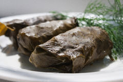 Dolma (Sarma). Dolma - a dish of rice and meat wrapped in grape leaves , common in Asia Royalty Free Stock Photo
