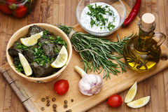 Dolma with slices of lemon and cream sauce. Dolma served with slices of lemon, cilantro, sour cream sauce with garlic on a wooden board. Olive oil with rosemary stock image