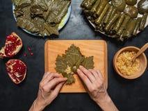 Dolma stoppade druvasidor Medelhavs- kokkonst Den nya och saftiga skinka- och melonsunen formade bakgrund royaltyfri bild