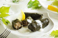 Dolma, stuffed grape leaves, Royalty Free Stock Photography