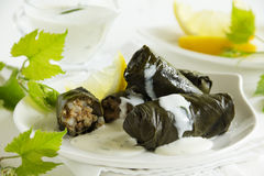 Dolma, stuffed grape leaves, Stock Image