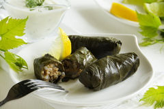 Dolma, stuffed grape leaves, Royalty Free Stock Image