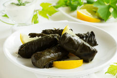 Dolma, stuffed grape leaves, Royalty Free Stock Images