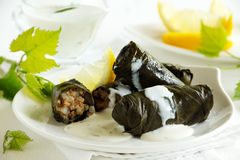 Dolma, stuffed grape leaves, Royalty Free Stock Photos