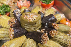 Dolma stuffed vegetables at an oriental restaurant buffet Royalty Free Stock Photos
