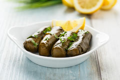 Dolma Stock Images