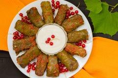 Dolma - ten winogrono opuszcza faszeruje z opierającym się, gotowanym minced mięsem, także Ja jest pospolity w kuchniach Kaukaz Obraz Stock