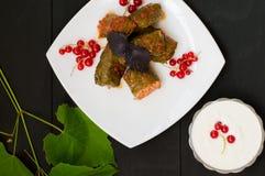 Dolma - ten winogrono opuszcza faszeruje z opierającym się, gotowanym minced mięsem, także Ja jest pospolity w kuchniach Kaukaz Obrazy Stock