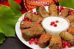 Dolma - ten winogrono opuszcza faszeruje z opierającym się, gotowanym minced mięsem, także Ja jest pospolity w kuchniach Kaukaz Obraz Royalty Free