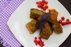 Dolma - ten winogrono opuszcza faszeruje z opierającym się, gotowanym minced mięsem, także Ja jest pospolity w kuchniach Kaukaz Zdjęcia Stock