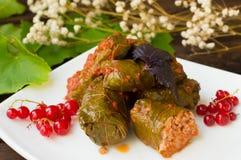 Dolma - ten winogrono opuszcza faszeruje z opierającym się, gotowanym minced mięsem, także Ja jest pospolity w kuchniach Kaukaz Fotografia Stock
