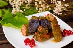 Dolma - ten winogrono opuszcza faszeruje z opierającym się, gotowanym minced mięsem, także Ja jest pospolity w kuchniach Kaukaz Fotografia Royalty Free