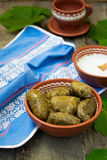 Dolma - a traditional Greek dish Royalty Free Stock Photo
