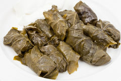 Dolma from vine leaves and mince on white plate Royalty Free Stock Photography