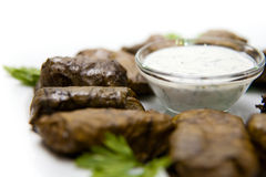 Dolma on a white plate with sour cream sauce Stock Photos