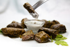Dolma on a white plate with sour cream sauce Royalty Free Stock Images