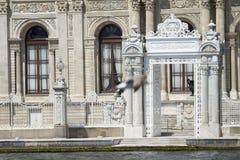 Dolmabahce宫殿, besiktas,伊斯坦布尔,火鸡 图库摄影