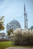 dolmabahce μουσουλμανικό τέμενο&s Στοκ εικόνα με δικαίωμα ελεύθερης χρήσης