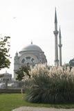dolmabahce μουσουλμανικό τέμενο&s Στοκ φωτογραφία με δικαίωμα ελεύθερης χρήσης
