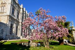 Dolmabahce palace royalty free stock photo