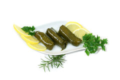Dolmadakia - alimento exótico Fotos de Stock Royalty Free