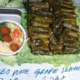 Dolmades и ливанская еда стоковые фото