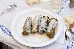 Dolmades Royalty Free Stock Image