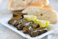 Dolmades, Filled Vineleaves Stock Image