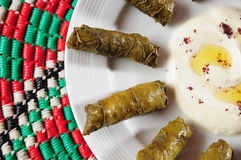 Dolmades with laban Stock Photography