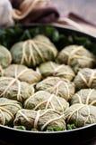 dolmades liść mięśni rabarbarowi ryż Obraz Royalty Free