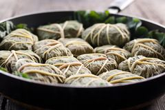 Dolmades with rhubarb leaves, meat and rice Stock Images