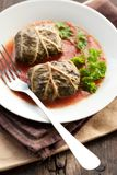 Dolmades with rhubarb leaves, meat and rice Royalty Free Stock Images