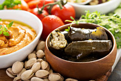 Dolmades, Stuffed Grape Leaves with rice Royalty Free Stock Images