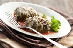 Dolmades With Rhubarb Leaves, Meat And Rice Royalty Free Stock Photos